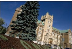 School Concordia University